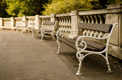 Benches in park Royalty Free Stock Photos