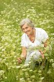 Nice old woman in the middle of the lawn Stock Photo