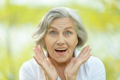 Nice old woman. On the summer park background Royalty Free Stock Photos