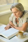 Nice older woman Royalty Free Stock Image