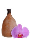 Nice orchid flower and clay jag Stock Images