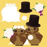 Nice owls bridegroom and bride Stock Image