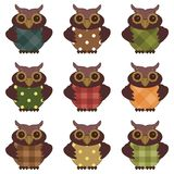 Nice owls on white background Stock Image