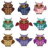 Nice owls on white background Stock Photo