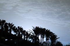 Nice paradise scene. Nice photo of sunset beach scene stock image