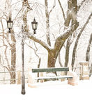 Nice park in winter. With snowfall Royalty Free Stock Images