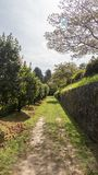 Nice path through the forest with trees and a stone wall. Galician landscape inside the Pazo de Mariñán. In A Coruña, Spain royalty free stock photography