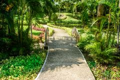 Nice pathway in the park for walking and relax Royalty Free Stock Photography