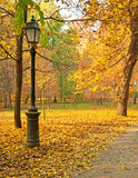 Nice pathway Stock Image