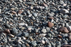 Nice pebble texture Stock Photos