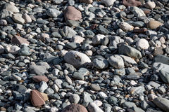 Nice pebble texture Royalty Free Stock Photography