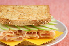 Nice picnic sandwich. Healthy and delicious fresh made club sandwich Royalty Free Stock Photos