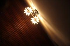 Beautiful lamp natual color photos Royalty Free Stock Photo