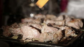 Nice pieces of meat are fried on the barbecue. Shallow dof. Shot on Canon 5D Mark II with Prime L Lenses stock footage