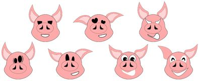 Set of Nice pig expressions isolated. Image representing the face of a cow with different expressions Royalty Free Stock Photography