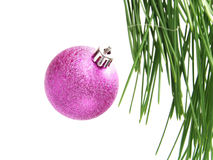 Nice pink bauble hanging on pine tree Royalty Free Stock Photo