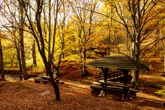 Nature park Grza. stock image