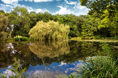 Nice pond in a garden Royalty Free Stock Images