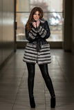 Nice Pretty Girl In Winter Jacket. Portrait Of Young And Beautiful Fashion Model In The Shopping Mall . Professional Makeup And Hair Style Royalty Free Stock Photography