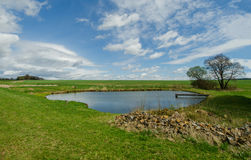 Nice private pond and sunny day Royalty Free Stock Photo