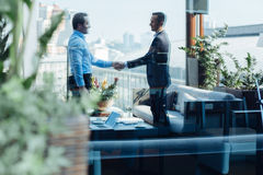 Nice professional entrepreneurs shaking hands. Professional agreement. Nice professional male entrepreneurs looking at each other and shaking hands while Royalty Free Stock Photo