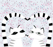Nice Racoons  in love Royalty Free Stock Image