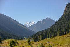 Nice ravine Altyn arashan. Beautiful ravine and mountains forest Royalty Free Stock Image