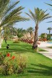 Nice Resort Garden With Pool. Stock Photography