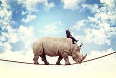 Nice ride. Businessman ride rhino on rope Royalty Free Stock Photo