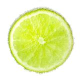 Nice ripe and juicy slice of a lime covered with Stock Images