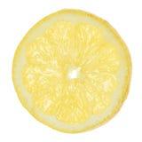 Nice ripe lemon slice isolated. On white backgrouond Royalty Free Stock Photography