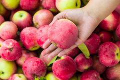 Nice Ripe Red Apples Background Royalty Free Stock Image