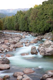 Nice river with clear water flowing Royalty Free Stock Image