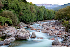 Nice river with clear water Royalty Free Stock Photo