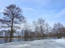 River Minija and nice trees in winter , Lithuania Royalty Free Stock Photography