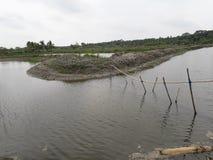 Nice river. Bangladeshi, nuture, beauty royalty free stock image
