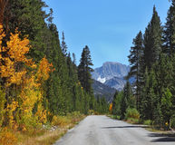 Nice road in the mountains Royalty Free Stock Image