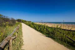 Nice road to beach, sunny day Stock Photos