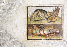 Nice roman mosaic with cat chasing a duck Stock Photos