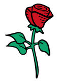 Nice  rose Royalty Free Stock Images