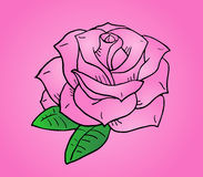 Nice rose illustration Royalty Free Stock Images
