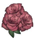 Nice rose illustration Royalty Free Stock Photos