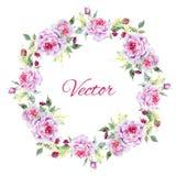 Nice rose wreath Stock Photos