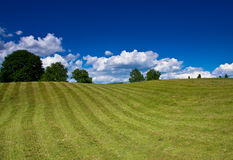 Nice rural landscape over blue sky Stock Photography