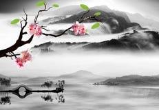 Nice sakura with paddy Stock Photos