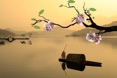 Nice sakura with paddy Royalty Free Stock Image
