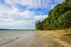 Karaka Bay Beach Auckland New Zealand Stock Photography