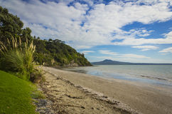 Karaka Bay Beach Auckland New Zealand. Nice sandy beach during morning low tide and view to Rangitoto Island Royalty Free Stock Image