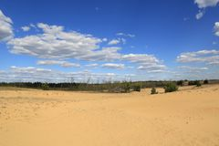 Sandy desert landscape. Nice sandy desert landscape with blue sky and white clouds Royalty Free Stock Images