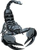 Nice scorpion. Illustrated nice scorpion isolated on white background Royalty Free Stock Images
